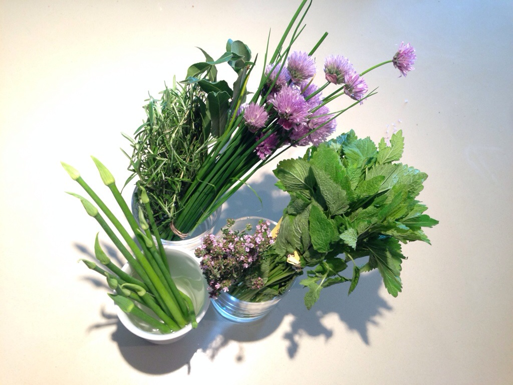 Fresh Organic Herbs Bought at Trout Lake Farmer Market