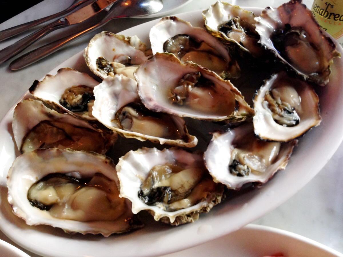 oyster happy hour   @  uva wine bar