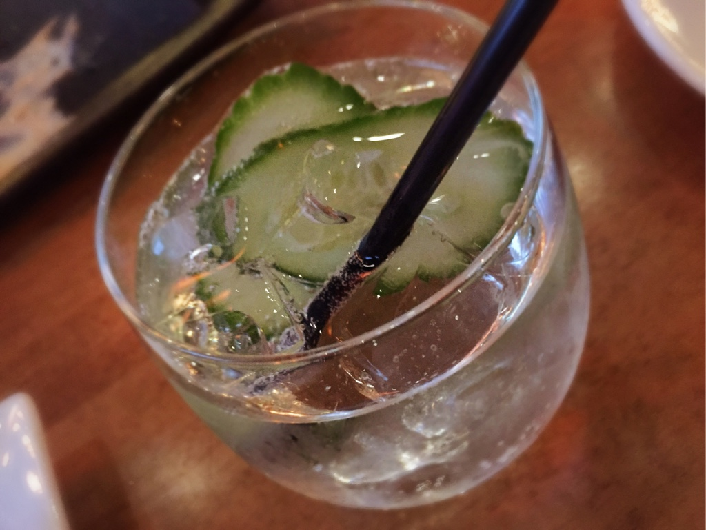 Hendrick's and Soda with Cucumber