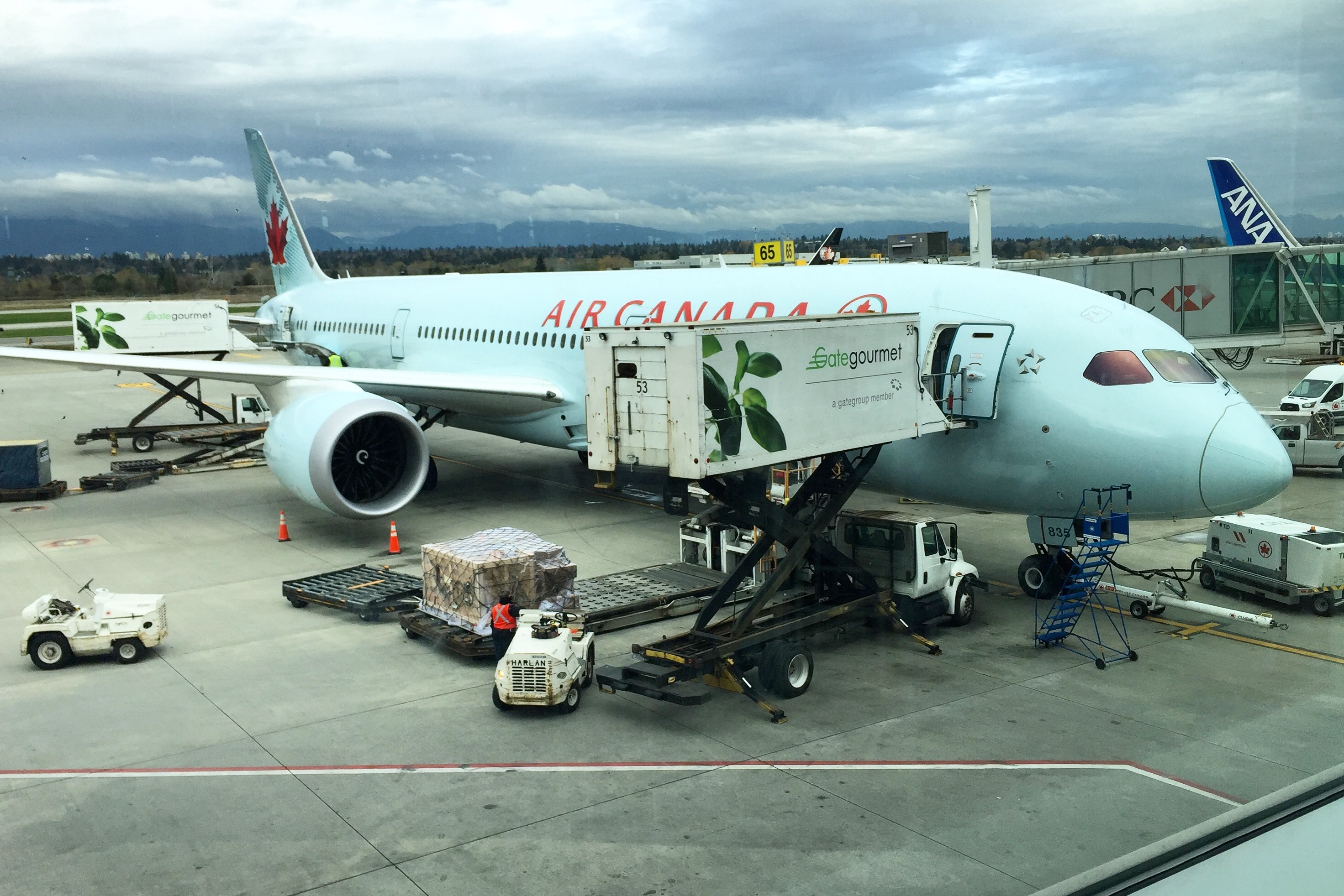 AC3 - 787 Dreamliner