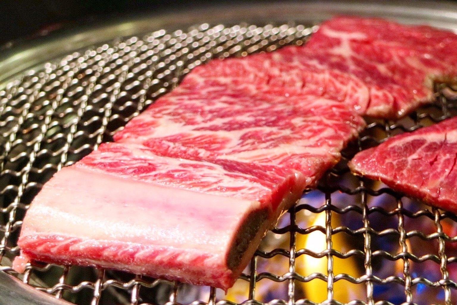 beef short rib / beef galbi