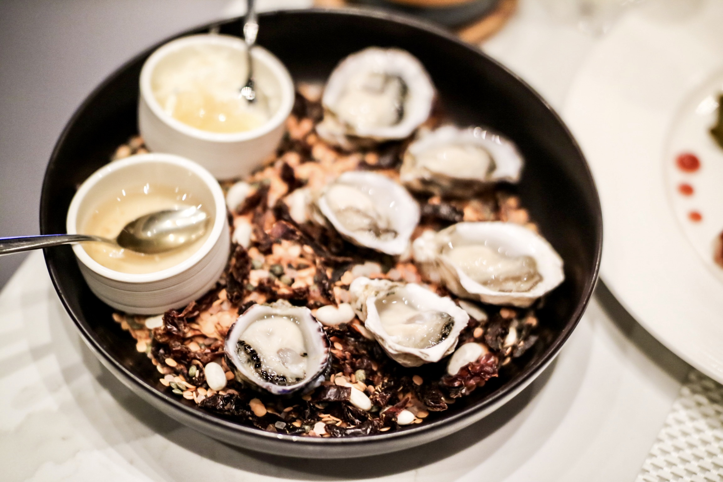Fresh Oysters / Huitres